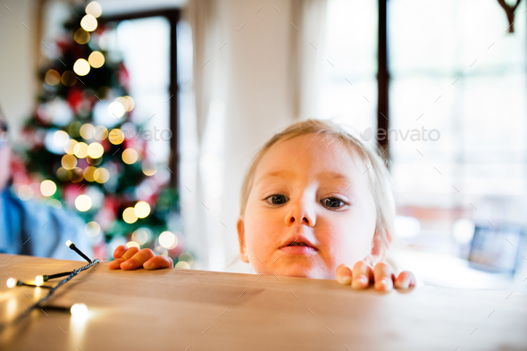 Little girl in kitchen at Christmas time. - Stock Photo - Images