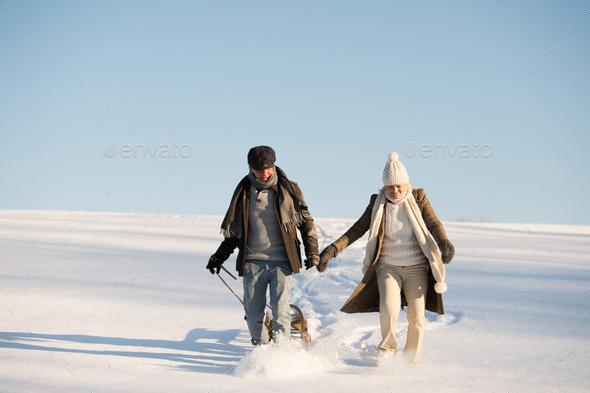 Beautiful senior couple on a walk pulling sledge, winter day. - Stock Photo - Images