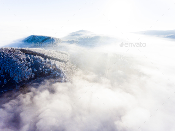 Aerial view of forest in winter. - Stock Photo - Images