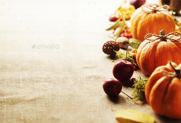 Pumpkins composition - Stock Photo - Images