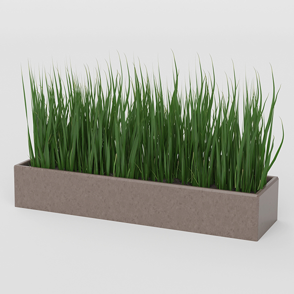 Grass Pot - 3DOcean Item for Sale