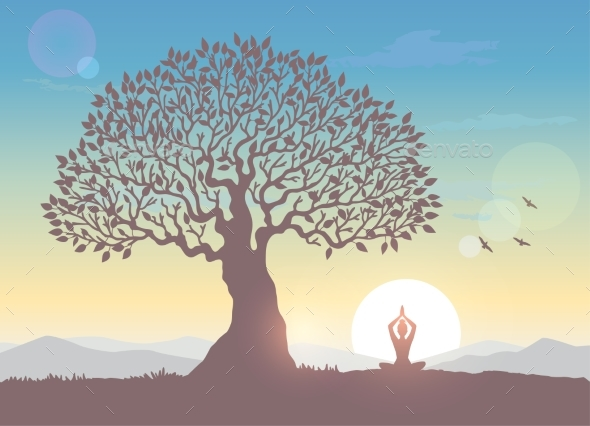 Sunrise Tree Yoga - Landscapes Nature