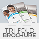 Trifold Brochure Template 18