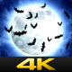 Halloween Moon and Bats - VideoHive Item for Sale