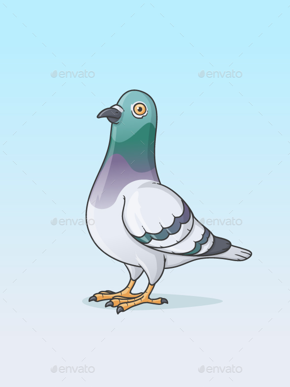 Pigeon - Animals Characters