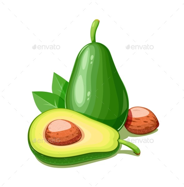 Avocado - Food Objects