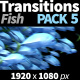 Transitions Fish - VideoHive Item for Sale