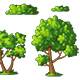 Illustration of Some Trees and Bushes