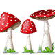 Illustration of Some Mushrooms