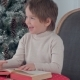 Cute Child Boy Looking at the Puctures in the Book Sitting on a Chair Near Christmas Tree - VideoHive Item for Sale