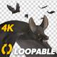 Bats - Swarm Flying Around - Loop - 4K - VideoHive Item for Sale