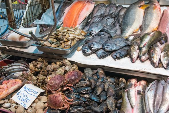 Shellfish, seafood and fish at a market - Stock Photo - Images