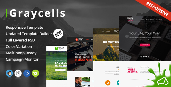 Graycells Email v2 – Responsive With Stampready Online Builder 60+ Modules            nulled