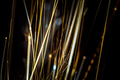 Colored flint sparks - PhotoDune Item for Sale