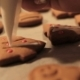 Decoration Process of Christmas Cookies - VideoHive Item for Sale