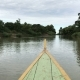 The Boat Sails Along the River Mekong in a Forests To Reach the Destination. Vietnam - VideoHive Item for Sale