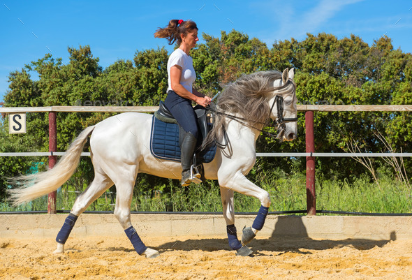 training of riding girl - Stock Photo - Images