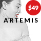 Artemis | Multi-purpose WooCommerce WordPress Theme - ThemeForest Item for Sale