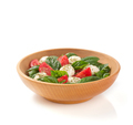 caprese salad in plate on white background - PhotoDune Item for Sale