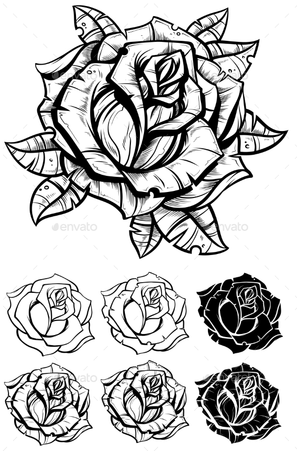 Black and White Graphic Realistic Detailed Rose - Flowers & Plants Nature