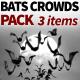 Bats Crowds Pack