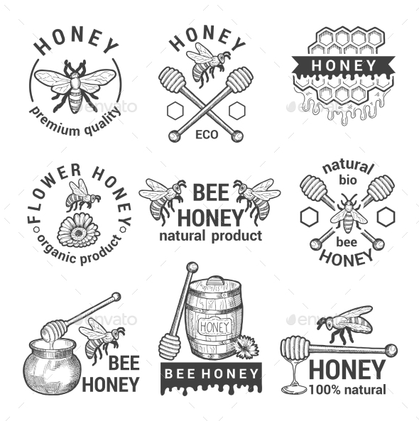 GraphicRiver Monochrome Labels Set with Honey 20790088