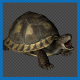 Turtle Die Pack 4 In 1 - VideoHive Item for Sale