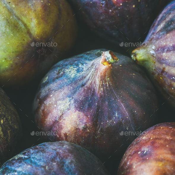 Close-up of fresh ripe seasonal purple figs. Food texture, background - Stock Photo - Images
