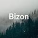 Bizon Creative Keynote Template