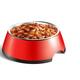Dog Bowl Wet Food Composition