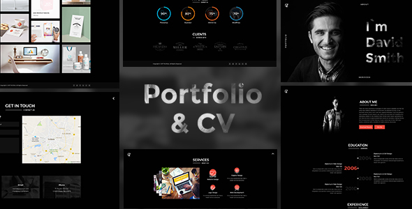 Download Portfolio And CV            nulled nulled version