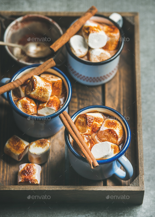 Hot chocolate with cinnamon and roasted marshmallows in wooden tray - Stock Photo - Images