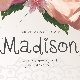 It's Madison! - GraphicRiver Item for Sale