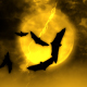 Halloween Night 2 - VideoHive Item for Sale