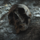 Ancient Human Skull Cinematic Animation