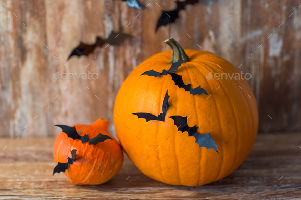 pumpkins with bats or halloween party decorations - Stock Photo - Images