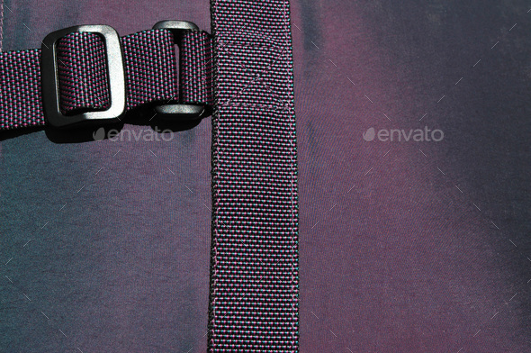 buckle on purple - Stock Photo - Images
