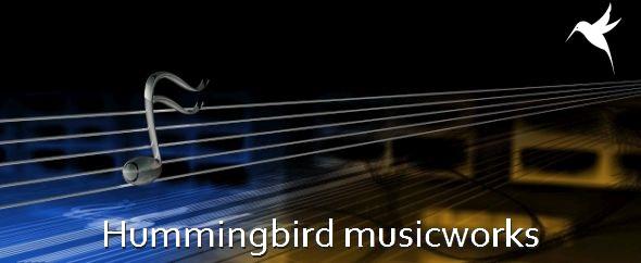 Hummingbird%20new%20format%20590%20242%20geschoond