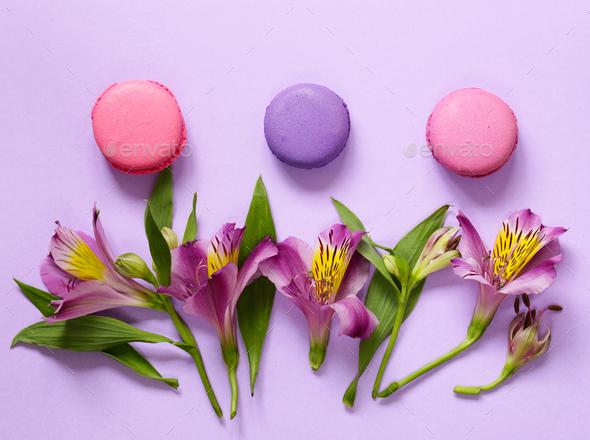 Macaroni  - Stock Photo - Images