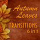Autumn Falling Leaves Transitions - VideoHive Item for Sale