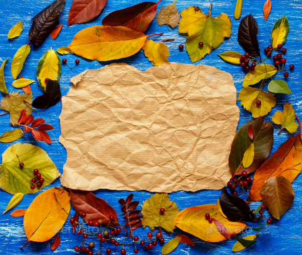 Autumn  leaves and paper on a blue  background - Stock Photo - Images