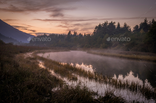 Foggy river in the morning - Stock Photo - Images