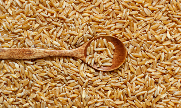 Pile of Kamut grain with a spoon - Stock Photo - Images