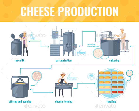 GraphicRiver Cheese Production Cartoon Infographics 20810359