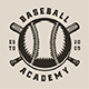 Vintage Baseball Emblems - GraphicRiver Item for Sale