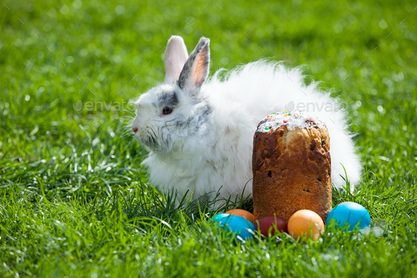 Easter bunny behind Easter cake and painted eggs - Stock Photo - Images