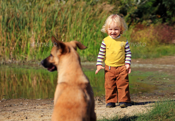 Little boy looking at a dog outdoors - Stock Photo - Images