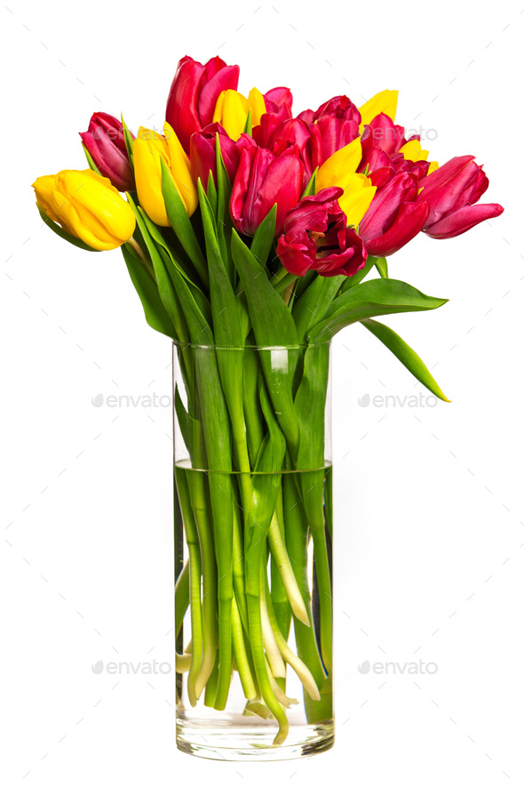 Bouquet of tulips over white - Stock Photo - Images