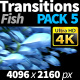 Transitions Fish 2 - VideoHive Item for Sale