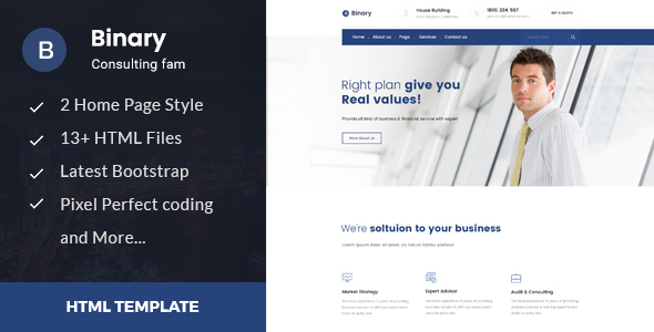 Binary - Business Consulting and Professional Services HTML Template